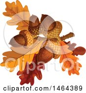 Clipart Of Acorns And Autumn Oak Leaves Royalty Free Vector Illustration by Vector Tradition SM