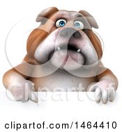 Clipart Of A 3d Bill Bulldog Mascot Over A Sign On A White Background Royalty Free Illustration
