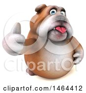Clipart Of A 3d Bill Bulldog Mascot Giving A Thumb Up On A White Background Royalty Free Illustration