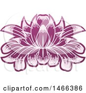 Clipart Of A Purple Blooming Lotus Flower Royalty Free Vector Illustration by AtStockIllustration