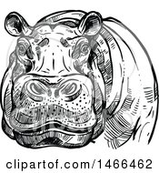 Clipart Of A Sketched Black And White Hippo Royalty Free Vector Illustration by Vector Tradition SM
