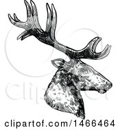 Clipart Of A Sketched Black And White Profiled Deer Or Carbiou Head Royalty Free Vector Illustration by Vector Tradition SM