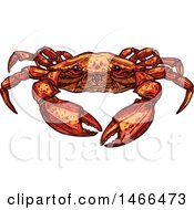 Clipart Of A Sketched Crab Royalty Free Vector Illustration