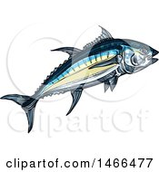 Clipart Of A Sketched Tuna Fish Royalty Free Vector Illustration by Vector Tradition SM