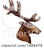 Clipart Of A Sketched Profiled Deer Or Carbiou Head Royalty Free Vector Illustration by Vector Tradition SM