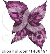 Clipart Of A Sketched Herb Purple Basil Royalty Free Vector Illustration