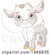 Clipart Of A Cute Baby Goat Kid Royalty Free Vector Illustration
