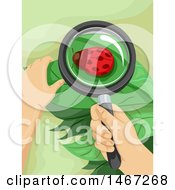 Clipart Of A Magnifying Glass Over A Ladybug On A Leaf Royalty Free Vector Illustration