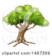 Clipart Of A Beautiful Fairy Tale Styled Tree With Roots Royalty Free Vector Illustration