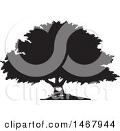 Clipart Of A Tree With A Heart On The Trunk Black And White Silhouette Royalty Free Vector Illustration by Johnny Sajem