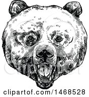 Sketched Black And White Bear Face
