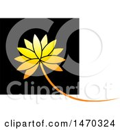 Golden Water Lily Lotus Flower Over A Black Square