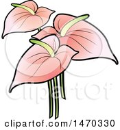 Clipart Of Pink Anthurium Flowers Royalty Free Vector Illustration by Lal Perera
