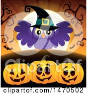 Clipart Of A Halloween Witch Owl Over Jackolanterns Royalty Free Vector Illustration