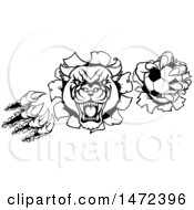 Clipart Of A Black And White Vicious Roaring Panther Monster Mascot Shredding Through A Wall With A Soccer Ball Royalty Free Vector Illustration