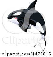 Clipart Of A Jumping Cute Killer Orca Whale Royalty Free Vector Illustration by Pushkin