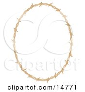 Oval Border Frame Of Barbed Wire Over A White Background