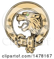 Scottish Wildcat Highlands Tiger In A Celtic Belt On A White Background