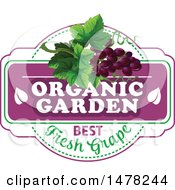 Purple Grapes And Text Design