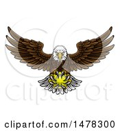 Cartoon Swooping American Bald Eagle With A Tennis Ball In His Talons
