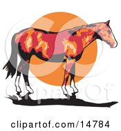 Brown Horse With White Feet Standing Against A Sunset Clipart Illustration by Andy Nortnik