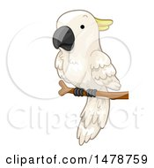 Clipart Of A Perched Cockatoo Parrot Royalty Free Vector Illustration