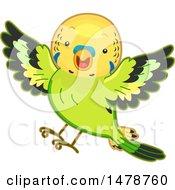 Clipart Of A Flying Budgerigar Parakeet Bird Royalty Free Vector Illustration by BNP Design Studio