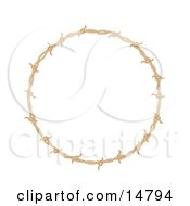 Circular Border Frame Of Barbed Wire Over A White Background