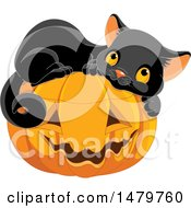 Cute Black Cat Resting On A Halloween Jackolantern Pumpkin