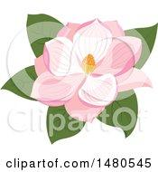 Poster, Art Print Of Pink Magnolia Flower