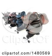 Poster, Art Print Of 3d Elephant Gorilla Hippo And Rhino On Spin Bikes On A White Background