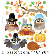 Clipart Of Thanksgiving Owls Royalty Free Vector Illustration