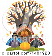Clipart Of A Group Of Thanksgiving Native And Pilgrim Turkey Birds At A Tree Royalty Free Vector Illustration