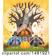Group Of Thanksgiving Native And Pilgrim Turkey Birds At A Tree
