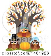 Clipart Of A Group Of Thanksgiving Owls At A Tree Royalty Free Vector Illustration