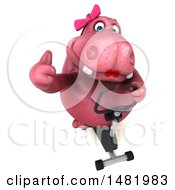 Clipart Of A 3d Pink Henrietta Hippo Character  On A White Background Royalty Free Illustration by Julos