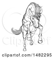 Poster, Art Print Of Black And White Rearing Charging Or Jumping Horse