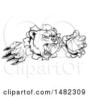 Clipart Of A Black And White Vicious Aggressive Bear Mascot Slashing Through A Wall With A Basketball In A Paw Royalty Free Vector Illustration