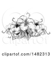 Clipart Of A Black And White Engraved Or Woodcut Hibiscus Flower Design Royalty Free Vector Illustration by AtStockIllustration