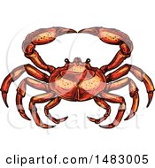 Sketched Crab