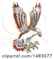 Clipart Of A Swooping Osprey In Sketched Tattoo Style Royalty Free Illustration