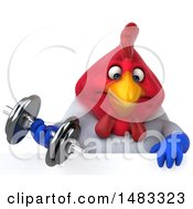 Poster, Art Print Of 3d Chubby French Chicken Holding A Dumbbell Over A Sign  On A White Background