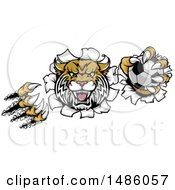 Clipart Of A Vicious Wildcat Mascot Shredding Through A Wall With A Soccer Ball Royalty Free Vector Illustration by AtStockIllustration