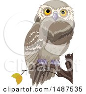 Perched Owl On A Branch