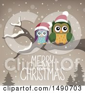 Clipart Of A Pair Of Owls On A Branch With Merry Christmas Text Royalty Free Vector Illustration