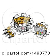 Clipart Of A Vicious Wildcat Mascot Shredding Through A Wall With A Video Game Controller Royalty Free Vector Illustration by AtStockIllustration