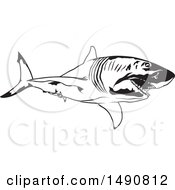 Clipart Of A Black And White Great White Shark Royalty Free Vector Illustration by dero