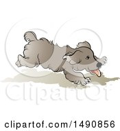 Playful Running Dog