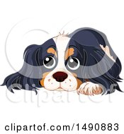 Clipart Of A Cute Spaniel Dog Resting Royalty Free Vector Illustration by Pushkin