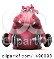 Clipart Of A 3d Pink Henrietta Hippo Character Holding Dumbbells On A White Background Royalty Free Illustration